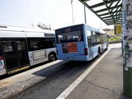 «Sei romena, siediti in fondo al bus» Condannato a zappare per 9 mesi
