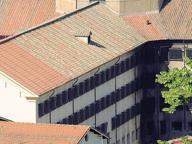 Detenuto muore a Regina Coeli Il pm: cure interrotte troppo presto