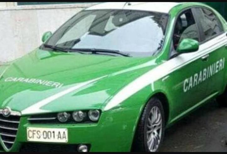 Le «nuove» auto  dei carabinieri si tingono di verde Guarda le foto