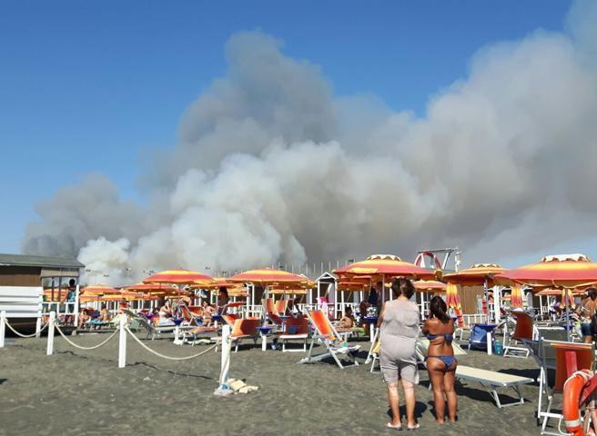 Roma, grosso incendio nella  pineta di Castel Fusano: il fumo invade le spiagge Foto