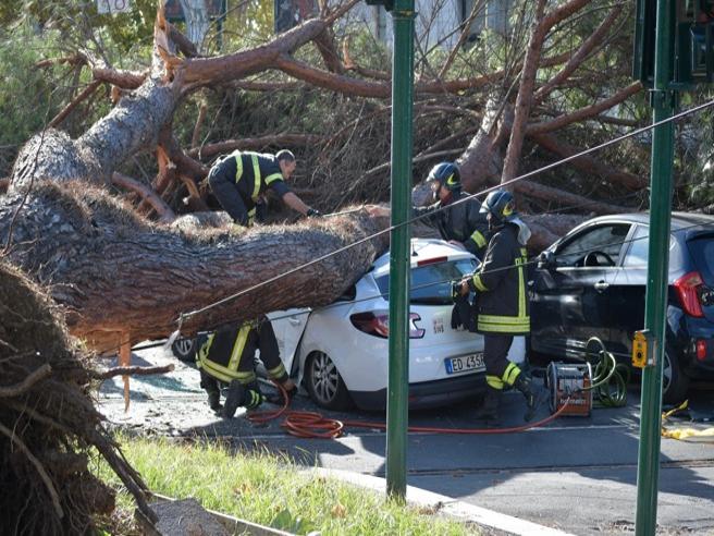 Roma, grosso pino si schianta su un taxi:  tre feriti. «Siamo vivi per miracolo»|Foto|Video
