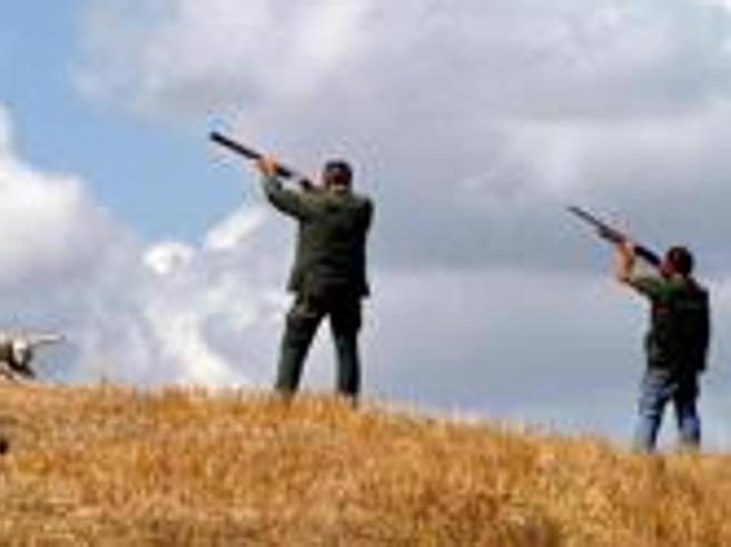 Lo scambiano per un cinghiale cacciatore ferito dai compagni - Tavole massoniche per compagni ...